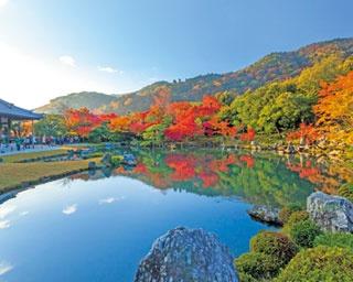 朝日が美しい早朝参拝も!嵐山も見える名庭園、天龍寺で真っ赤な紅葉を