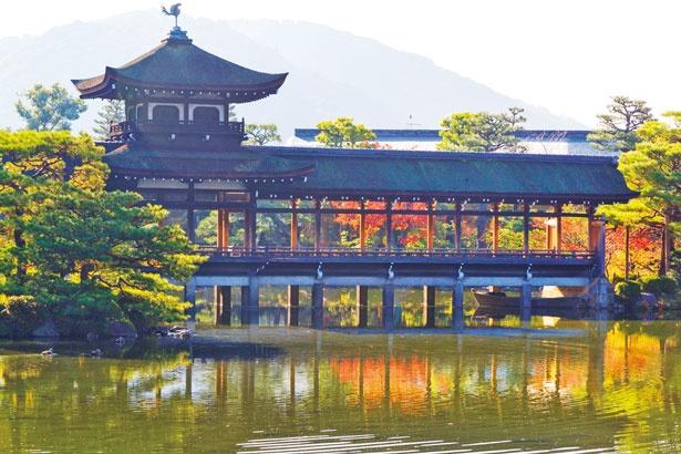 イロハモミジやカエデなど約30本が赤や黄色に色付く中、泰平閣が水面に映る/平安神宮