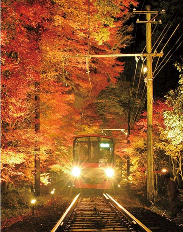 紅葉のトンネルはスピードを落として走行/叡山電車きらら (叡山電車鞍馬線)