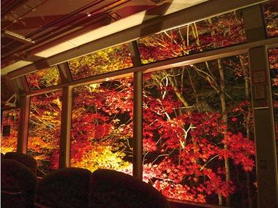 車窓から見る幻想的なライトアップ/叡山電車きらら (叡山電車鞍馬線)