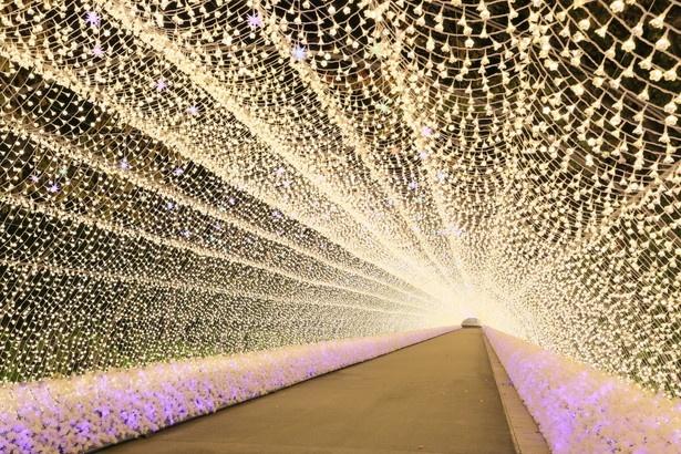 2013年に「死ぬまでに行きたい!世界の絶景」に選ばれた200mの光のトンネル。花の形をした電飾に胸キュン!