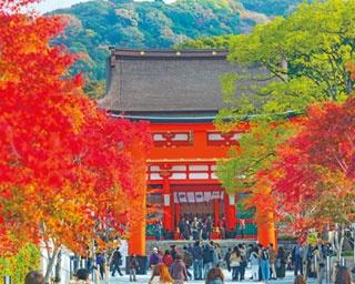 参道の大きな鳥居は、鮮やかに染まる紅葉と併せて楽しみたい/伏見稲荷大社