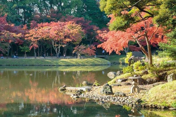 琵琶湖がモチーフの大泉水。かつてはこの池で舟遊びをしていたとも言われている