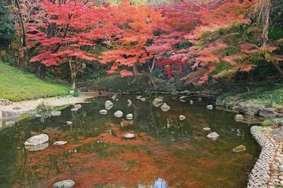 小石川後楽園(東京都文京区)