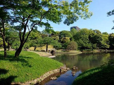 【写真を見る】琵琶湖がモチーフの大泉水。かつてはこの池で舟遊びをしていたとも言われている