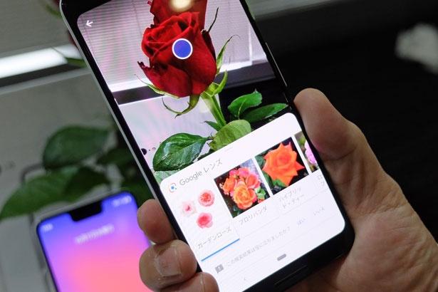 「Googleレンズ」はカメラを起動し写真撮影のボタンを押すと、あっという間に類似画像がズラリ。英文などの翻訳も可能だから、ありがたすぎる機能だ
