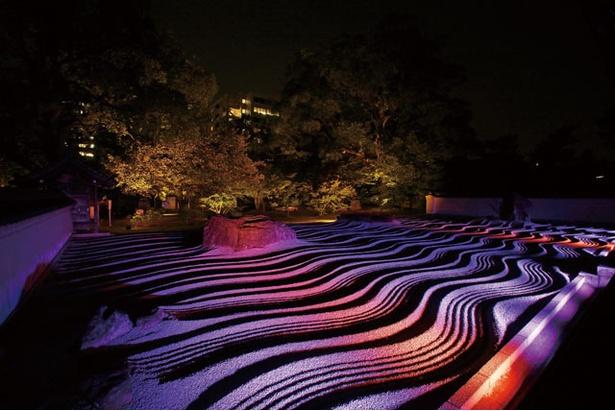 博多旧市街ライトアップウォーク 千年煌夜 / 本堂に上がり、鮮やかな照明に照らされた庭園を室内から楽しめる承天寺(写真はイメージ)