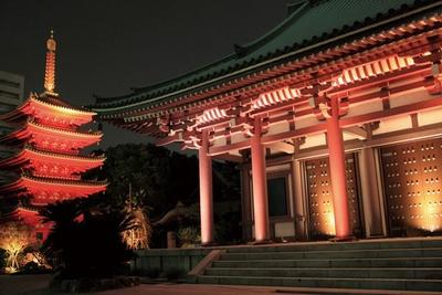 【写真を見る】博多旧市街ライトアップウォーク 千年煌夜 / 大博通り沿いにある東長寺では、本堂や五重塔をライトアップする