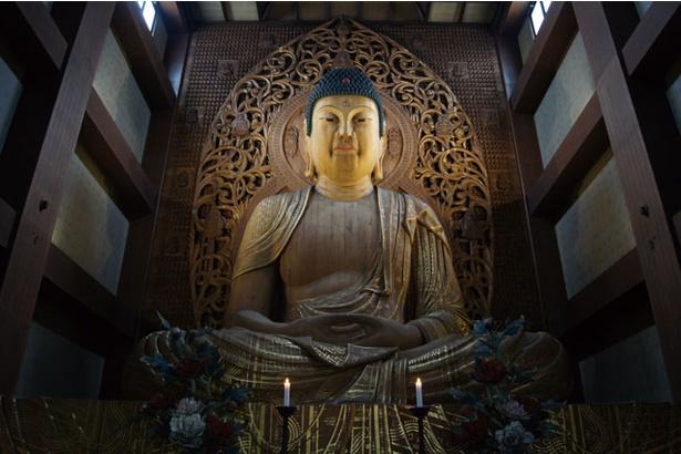 博多旧市街 ライトアップウォーク 千年煌夜 / 日本最大級の木造坐像を観覧