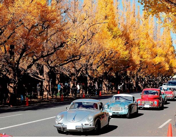 明治神宮外苑の銀杏並木の下を通るクラシックカーの数々