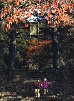 英彦山(福岡県田川郡) / 日本屈指の霊山で紅葉と神々に癒される