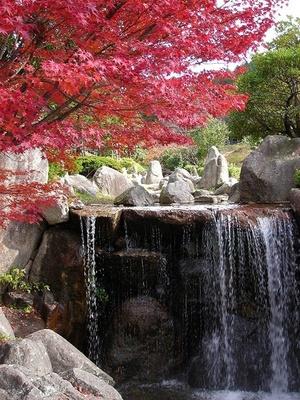 三郡山(福岡県糟屋郡宇美町) / 鮮やかな木々に囲まれた縦走路を歩く
