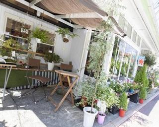 日本で最も古い生花店に併設「HAHA CAFE」! 花に囲まれた元町の癒しの空間で和む