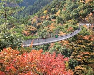 乳待坊公園(佐賀県武雄市山内町) / 奇岩と紅葉が生み出す自然美を鑑賞