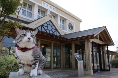 旅猫 ニャン吉の大冒険 / 鹿児島県・阿久根駅