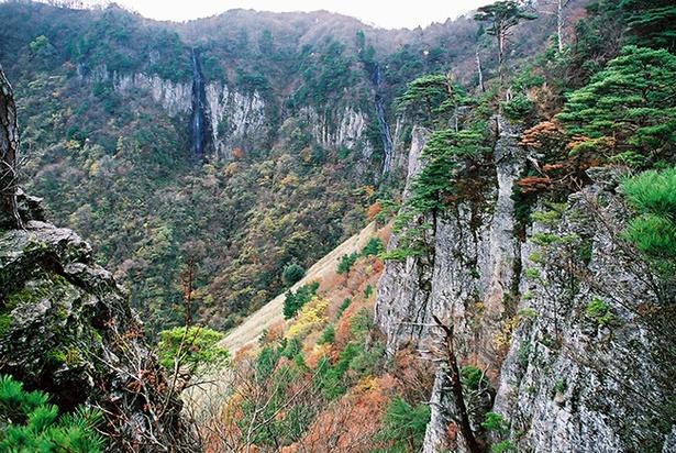 断崖絶壁の千丈滝の眺め。葉が色づくとより美しい表情を見せてくれる