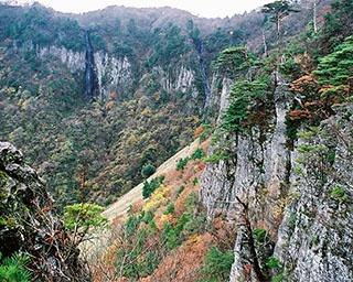 鱒返しの滝との組み合わせが絶景!鳥取県・船上山の紅葉が見頃