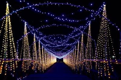 「イルミネーションFANTASEUM」光の回廊