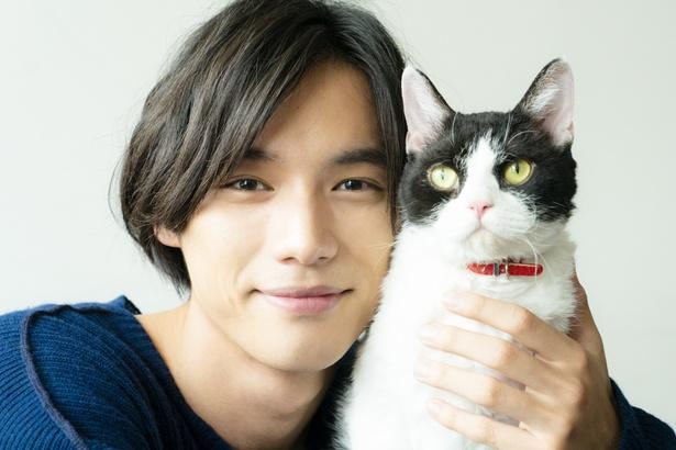 福士蒼汰、猫との2ショットで無防備な笑顔を炸裂!『旅猫リポート』インタビュー