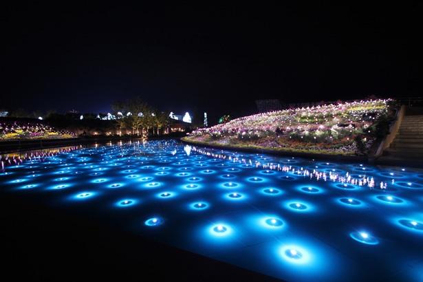 「光りの花」をイメージした水中イルミネーションはまるで宝石をちりばめたような美しさ