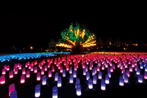 シンボルツリーと ランタンイルミネーション 「光の草原」 。音楽に合わせて光が変化するショ ーも実施。