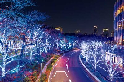 【写真を見る】ブルーとホワイトの幻想的なイルミネーションがミッドタウン・ガーデンのカーブの沿道を彩る「スターライトロード」