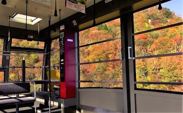 絶景ロープウェイから見える紅葉