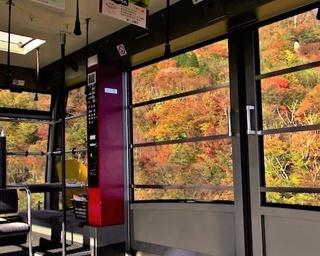 山岳リゾート「びわ湖バレイ」に紅葉シーズン到来!