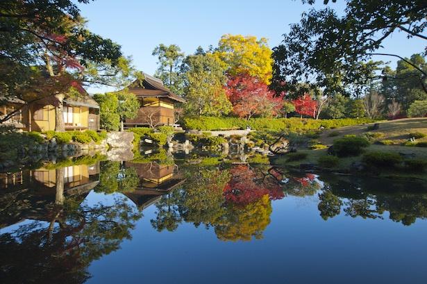【写真を見る】依水園の紅葉は例年12月上旬までが見頃