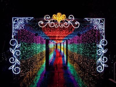 【写真を見る】約50メートルの光のトンネル「ミュージックBOX」は音楽と共にイルミが点灯