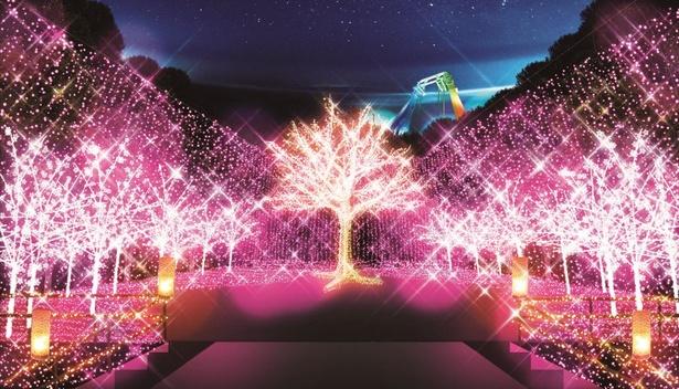 「桜の園」では華やかなピンクイルミにキュン