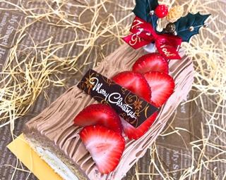 クリスマスケーキ作りにイルミ観賞!若い女性に支持されるH.I.S.の今冬おすすめバスツアー3選