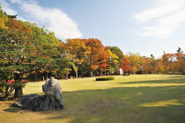 【写真を見る】赤や黄色などさまざまに色付いた紅葉と庭園の共演は見事!