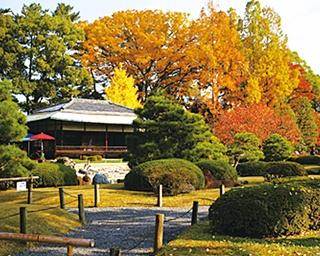 秋の二条城で、3つの庭園を巡りながら色とりどりの紅葉鑑賞を!