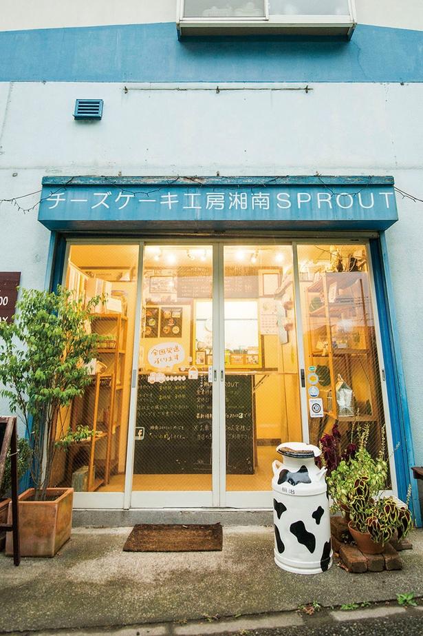「チーズケーキ工房 湘南SPROUT」は今や神奈川を代表するチーズケーキ専門店