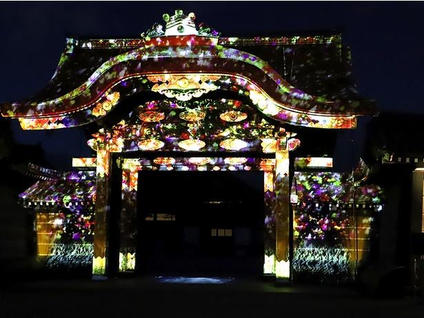 京都 二条城 イベント