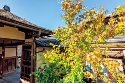 1階からはもちろん、2階の窓際席からも格子越しに庭園を眺められる。人気紅葉スポットの清水寺からすぐなのもうれしい/MACCHA HOUSE抹茶館清水産寧坂店