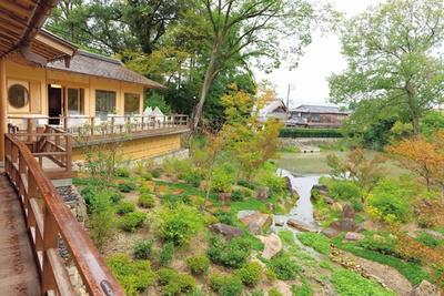 庭園奥には八島ヶ池が。水鳥が飛来する様子を見られるかも/稲荷茶寮