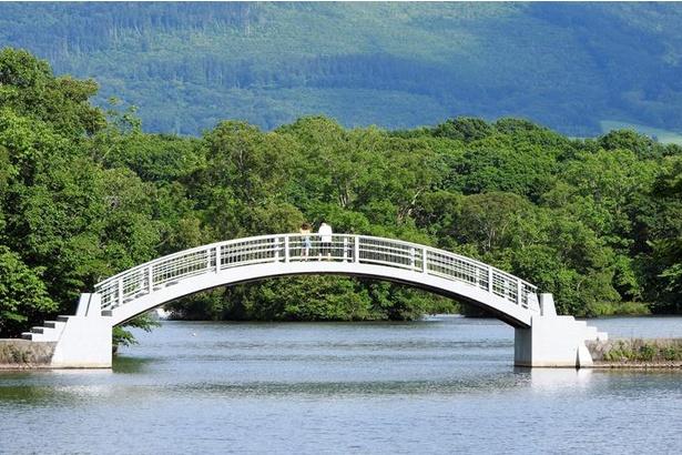 大小さまざまな大きさ・形の橋があり、散策路がある島へは自由に行き来することできます