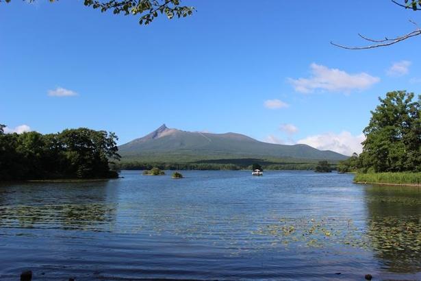 大沼国定公園は、活火山の駒ヶ岳の裾野に広がる自然公園