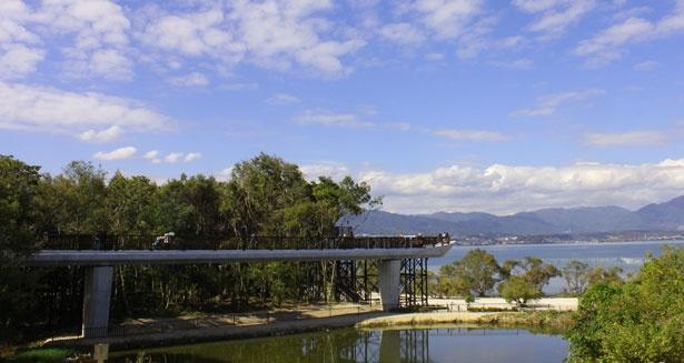 琵琶湖が一望できる空中遊歩道「樹冠トレイル」が完成!
