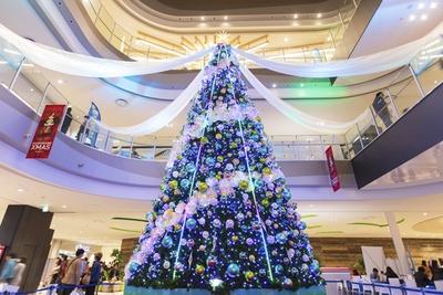 船の帆をイメージしたドレープをまとうビッグクリスマスツリーは館内センターコートに!