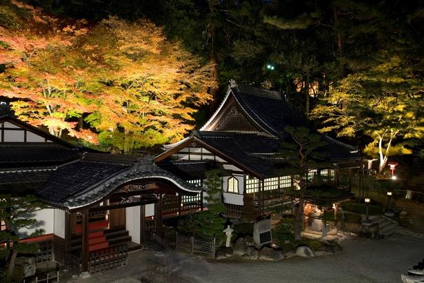 【写真を見る】境内・庭園特別拝観やミニコンサートも開催