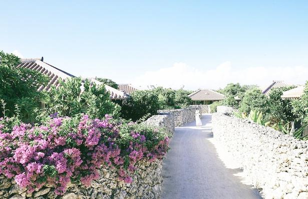 【写真を見る】沖縄・竹富島のリゾート「星のや竹富島」