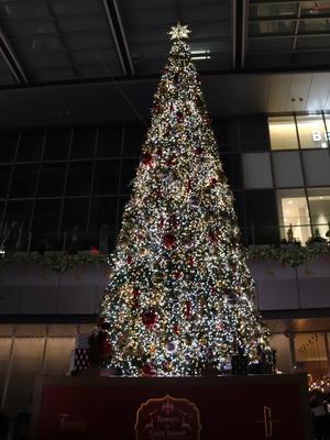 【写真を見る】高さ約12mの巨大ツリーが名古屋駅に出現!