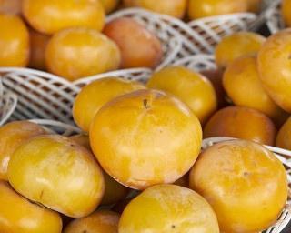 果実が豊富で秋の柿も豊作!開園80年以上の福岡・うきは「春光園」