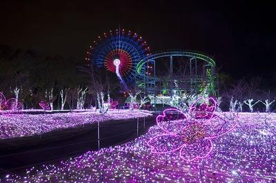 鮮やかに園内が彩られるイルミネーション。ロマンチックな雰囲気に浸ろう