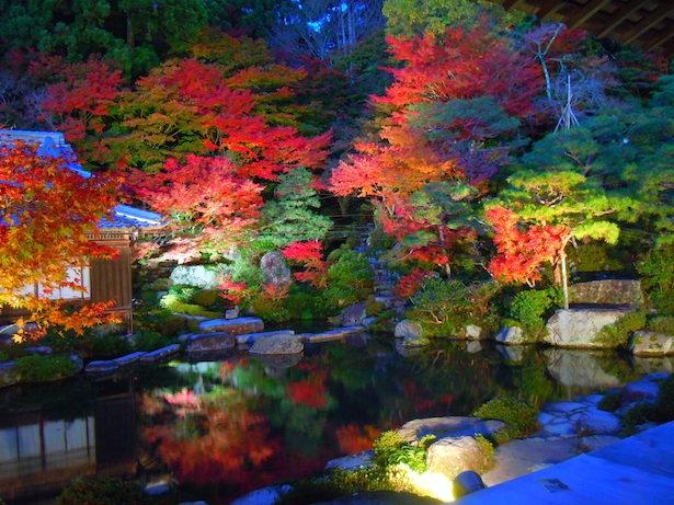 湖東三山 百済寺の紅葉