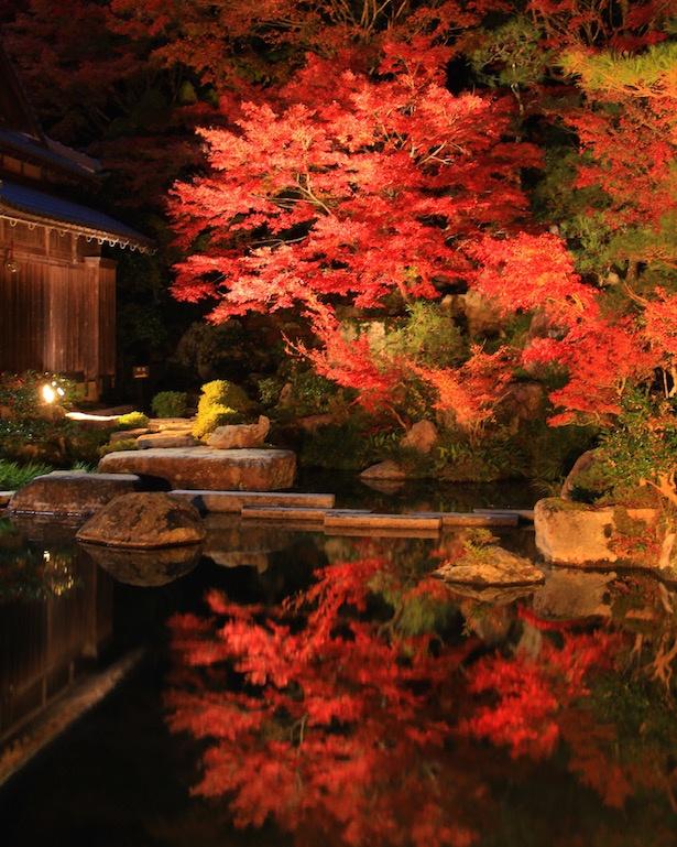 【写真を見る】日本の紅葉百選にも選ばれている人気の穴場紅葉スポット
