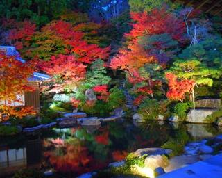 日本の紅葉百選!湖東三山 百済寺の紅葉が見頃
